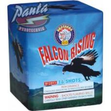 Falcon rising 25 ran