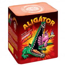 Aligator - 16 ran